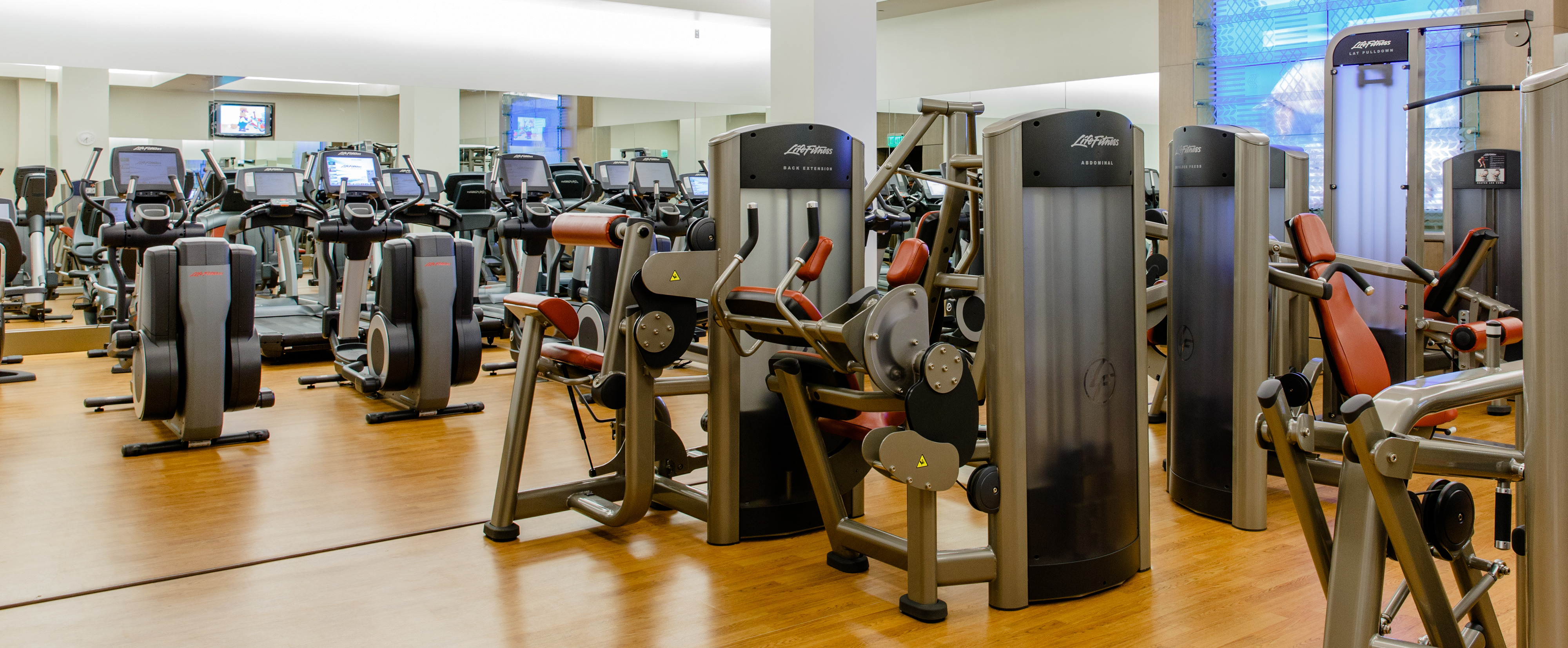 Life Fitness Elliptical Machines Along A Mirrored Wall Inside Mikimiki Center
