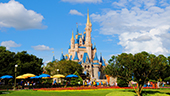 Disney's Culture of Excellence | College Edition: Disney Youth Education Series
