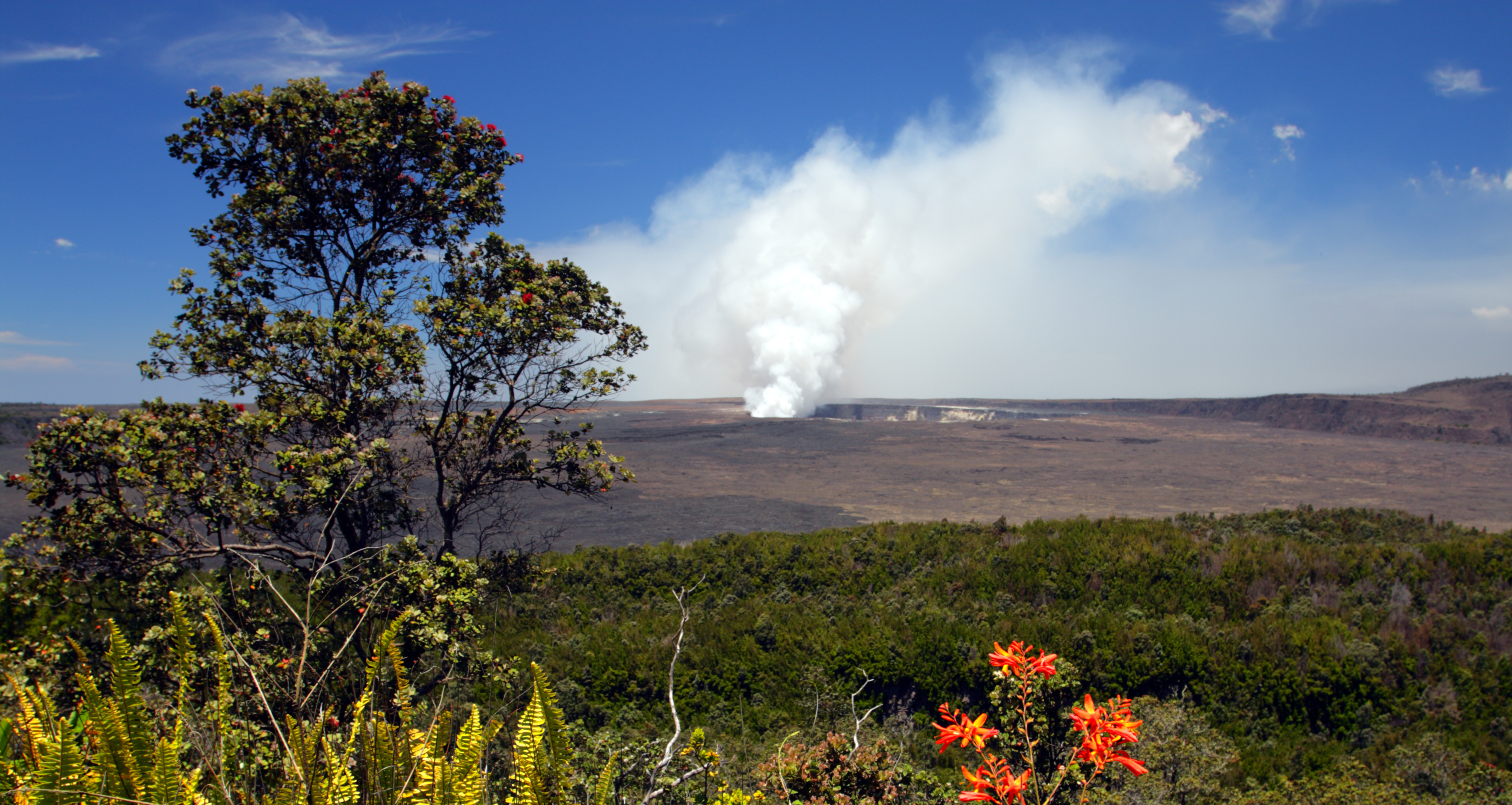 The steamy plume of a volcano rises in the distance over the Hawaiian landscape