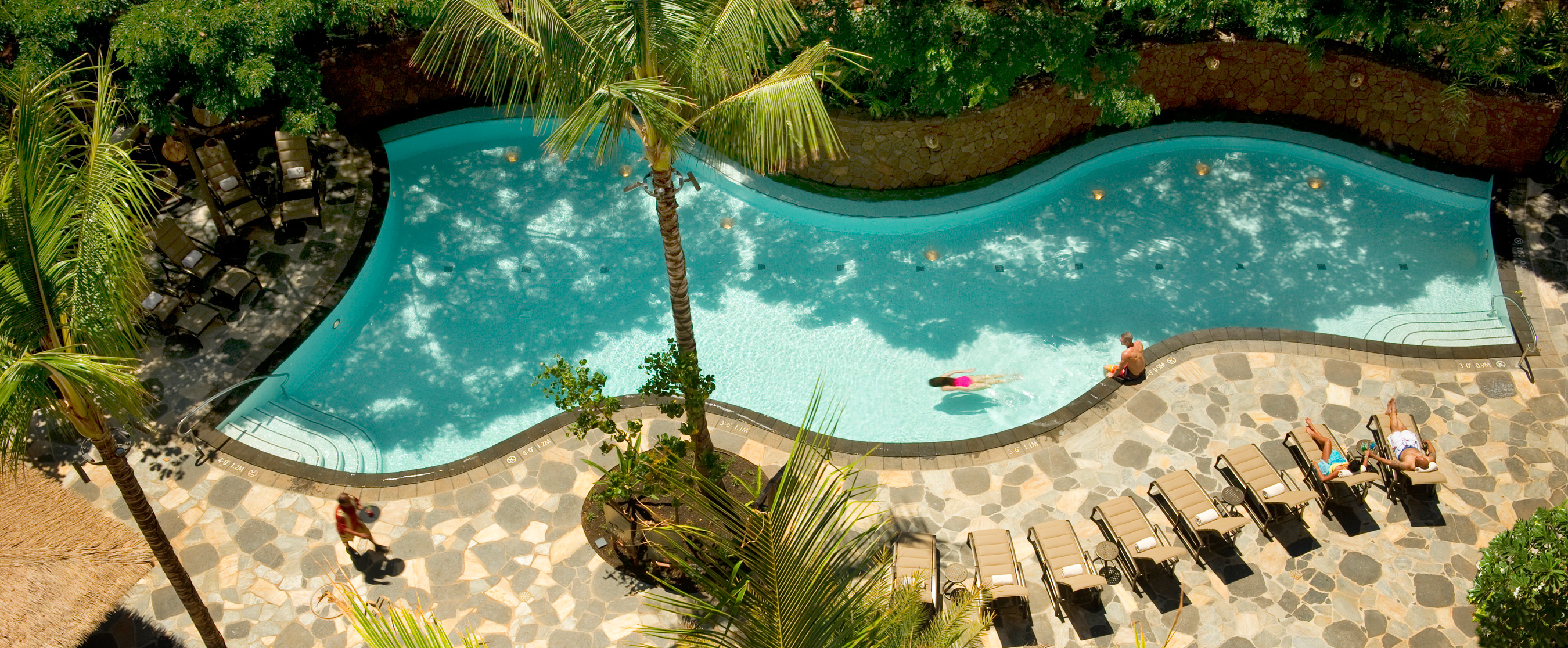 An aerial view of a serpentine pool with a rock retaining wall, surrounded by lounge chairs and palm trees