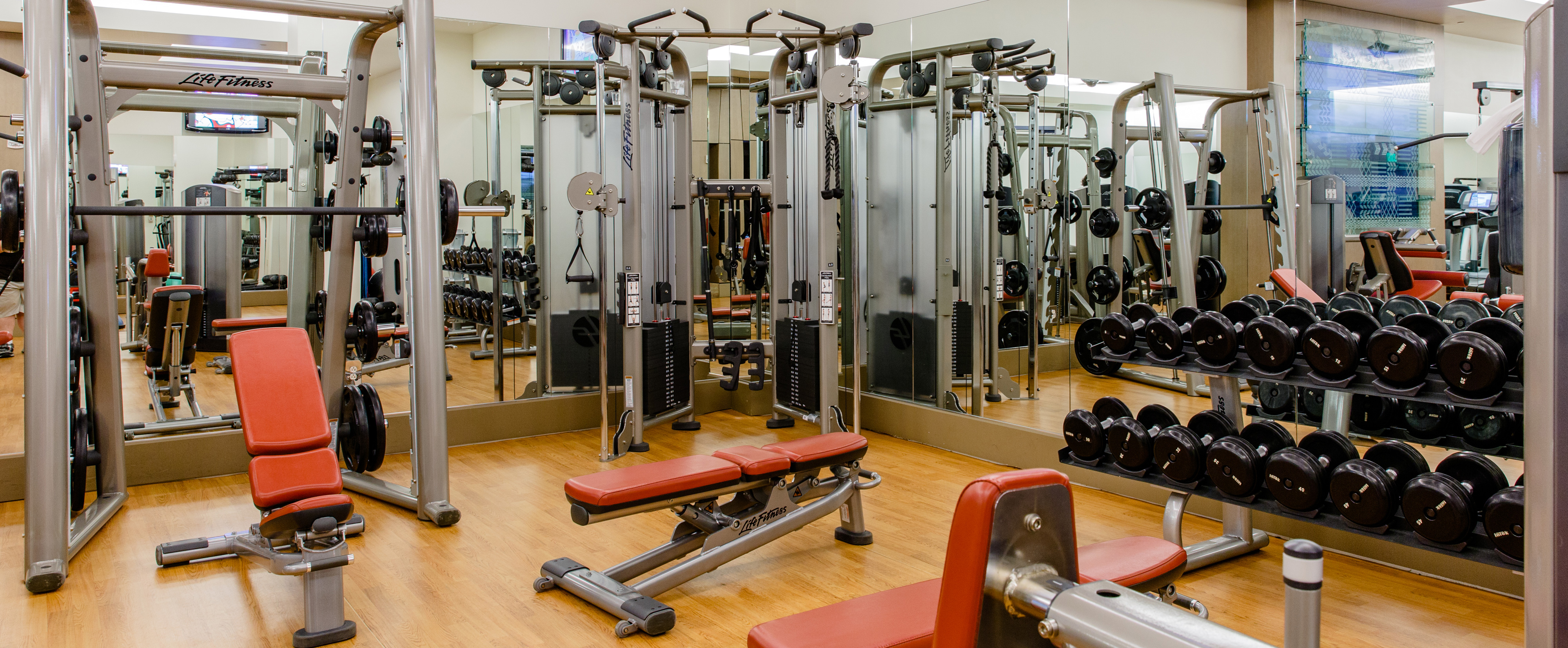 Ab benches, a Smith machine, cable machine with pull-up bars and racked free weights