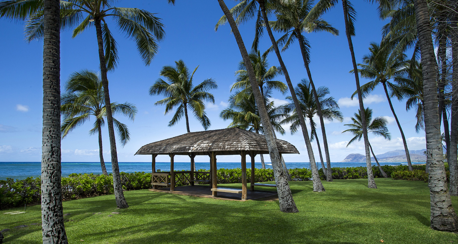 A thatched pergola stands on a lawn amid palm trees beside the ocean