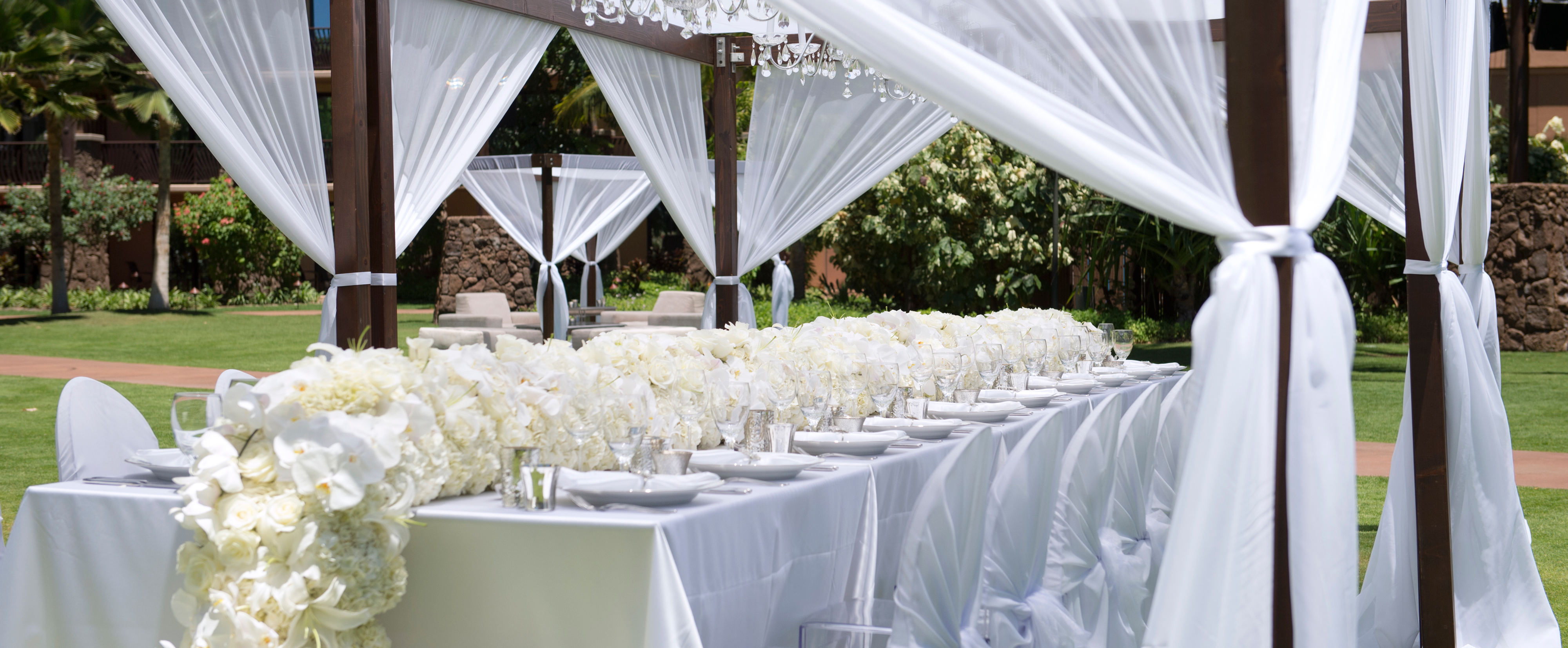 a wedding party banquet table decorated with a garland of white roses and orchids under a - Multi Canopy Decor