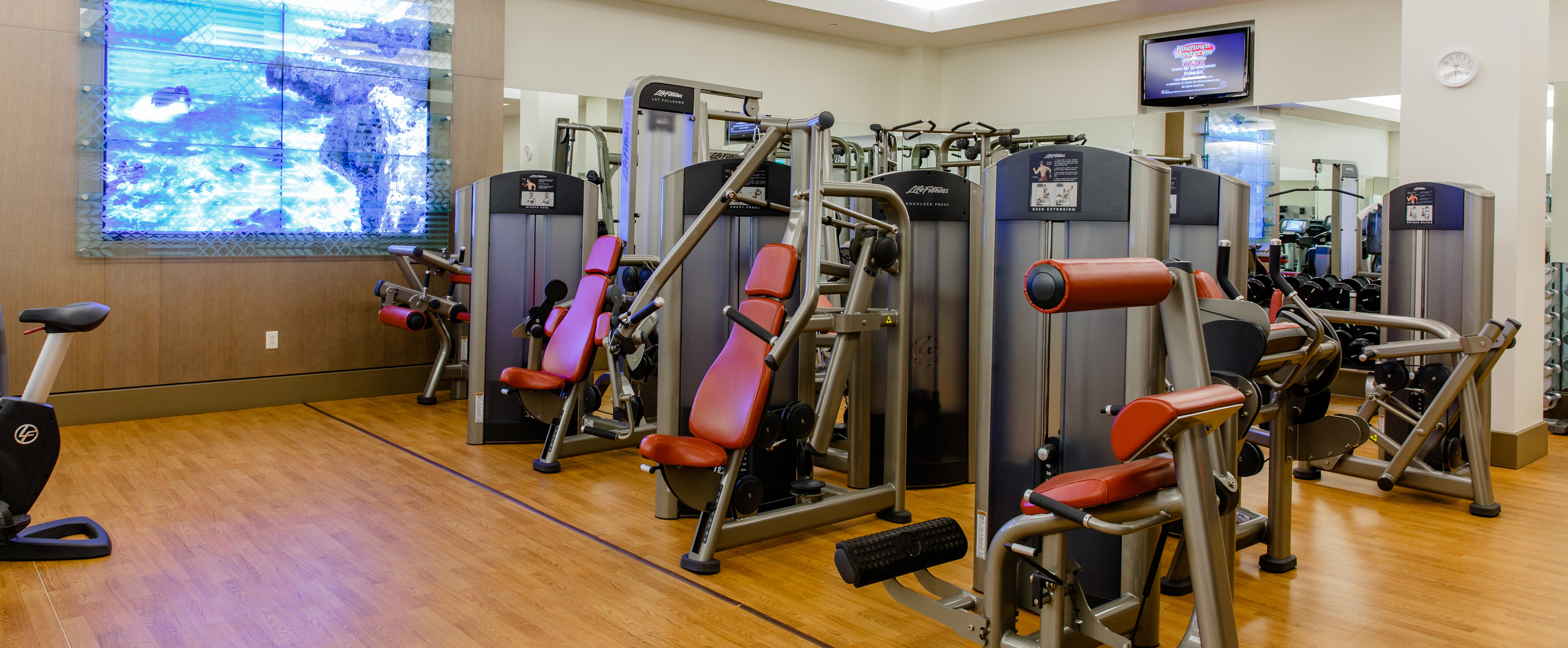 Various Life Fitness resistance machines in a corner area below a wall-mounted TV